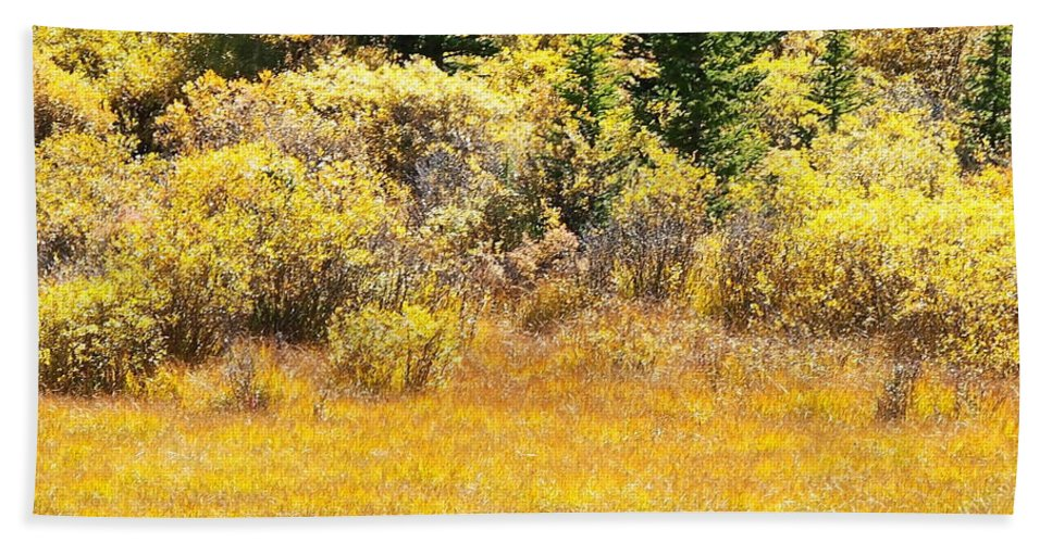 Colorado Bath Sheet featuring the photograph Autumn Fire In The Grass by Amy McDaniel