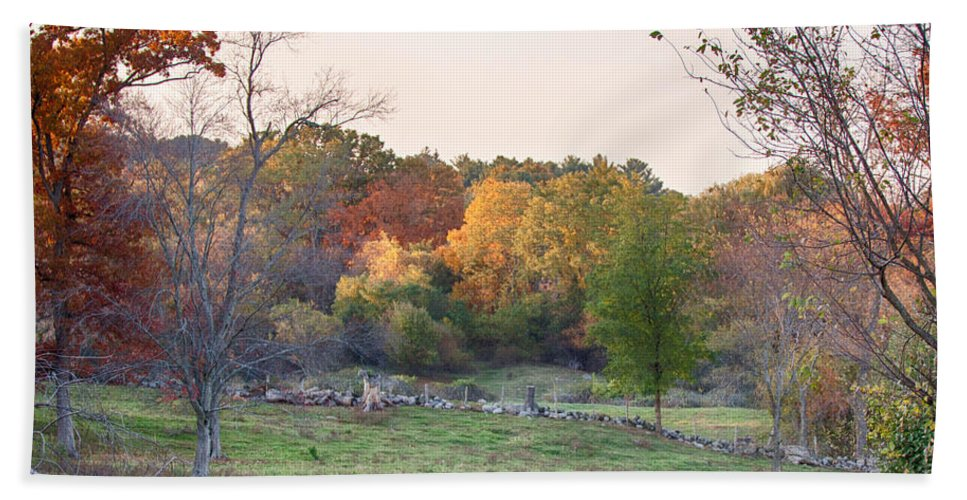 Farm Photography Hand Towel featuring the photograph Autumn Forage Before Winter's Arrival by Jeff Folger