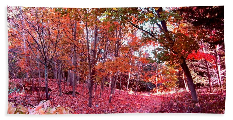Autumn Hand Towel featuring the photograph Autumn Forest by Lena Photo Art