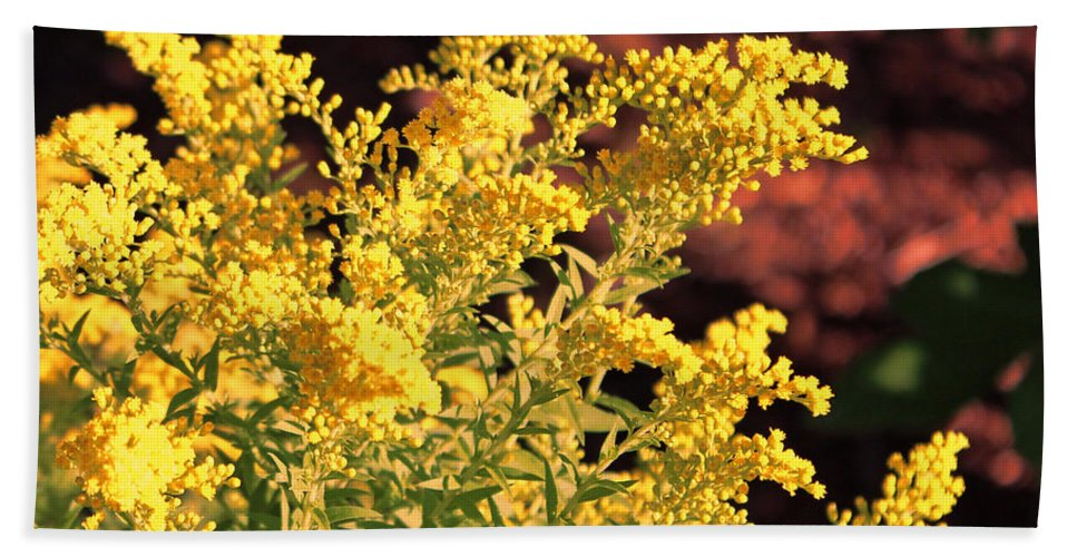 Yellow Foliage Plant Bath Sheet featuring the photograph Autumn Glow by Sylvia Thornton