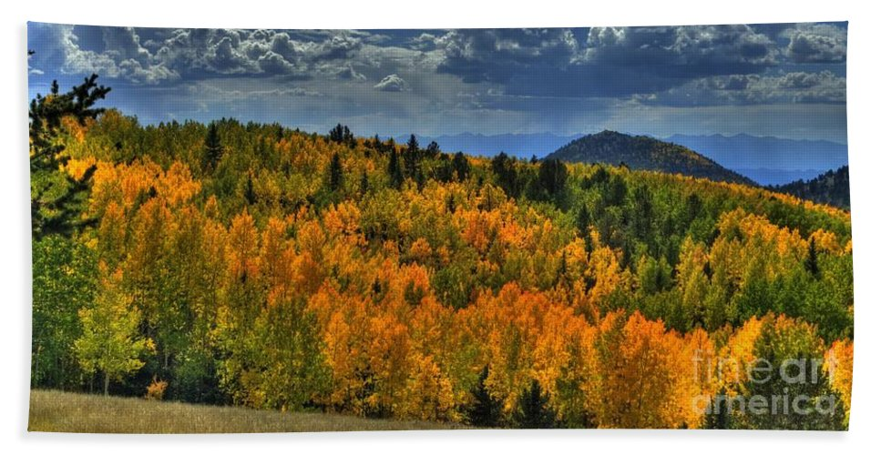 Fall Bath Sheet featuring the photograph Autumn In Colorado by Tony Baca