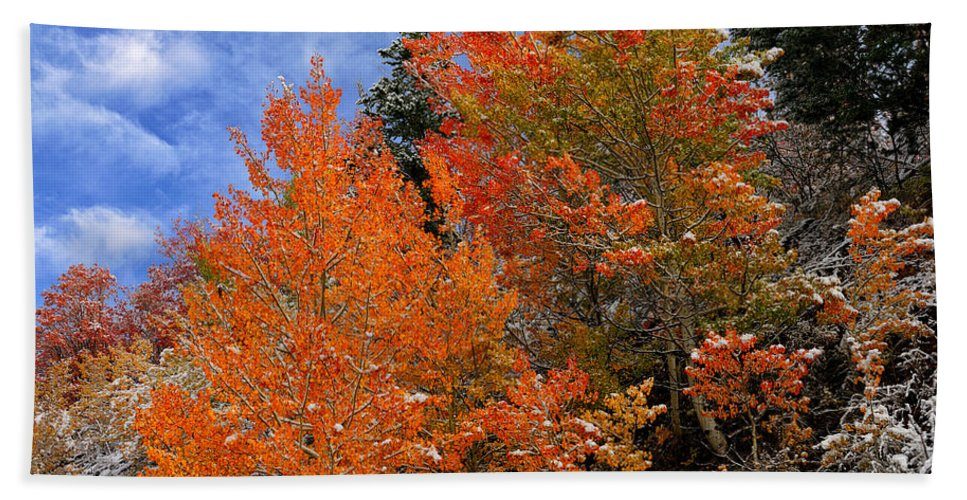 Autumn Bath Sheet featuring the photograph Autumn In Idaho by Greg Norrell