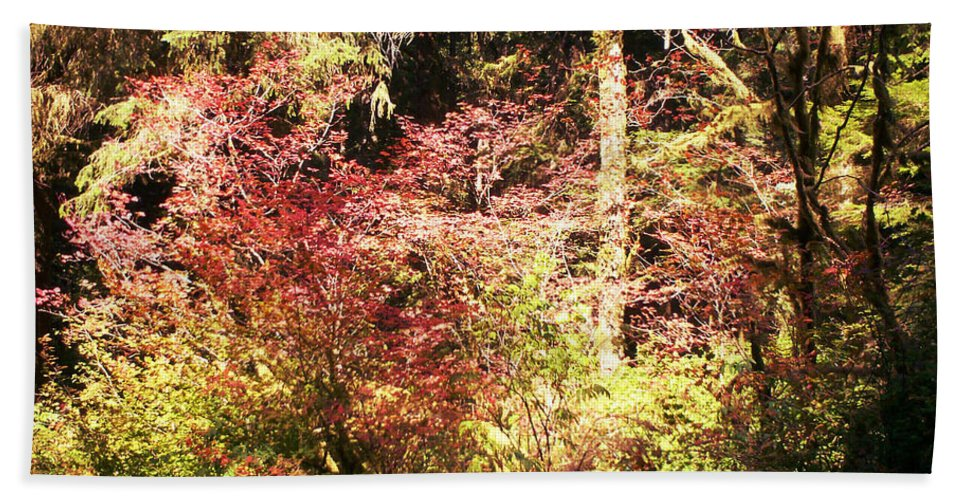 Autumn Hand Towel featuring the photograph Autumn Is In The Air by Absinthe Art By Michelle LeAnn Scott