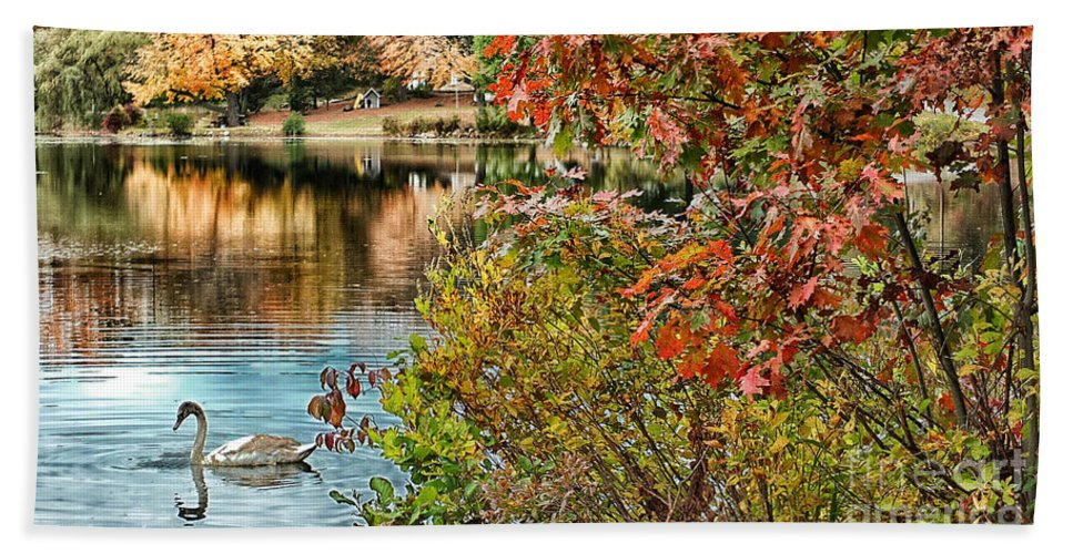 Autumn Bath Sheet featuring the photograph Autumn Lake And Swan by Mike Nellums