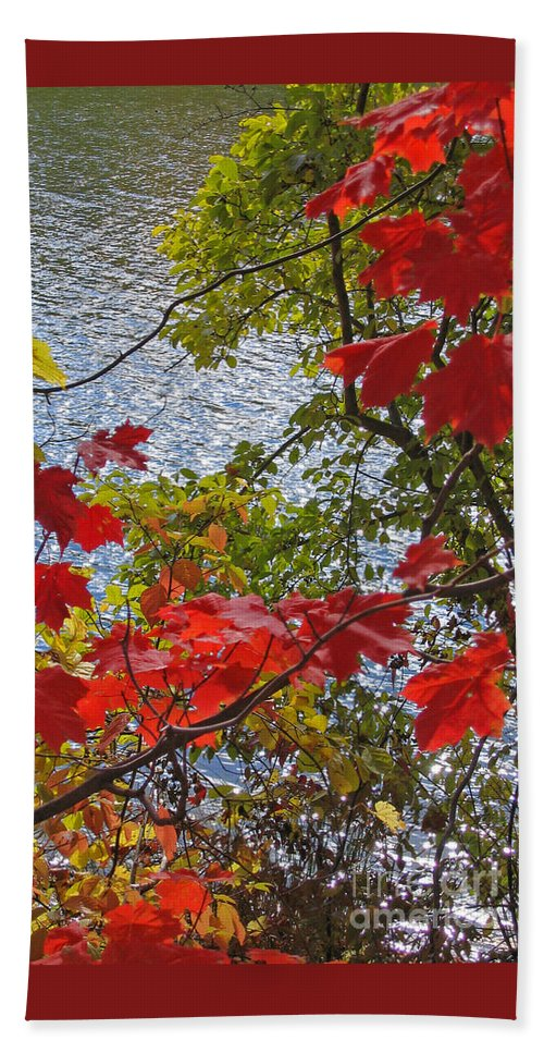 Autumn Bath Towel featuring the photograph Autumn Lake by Ann Horn