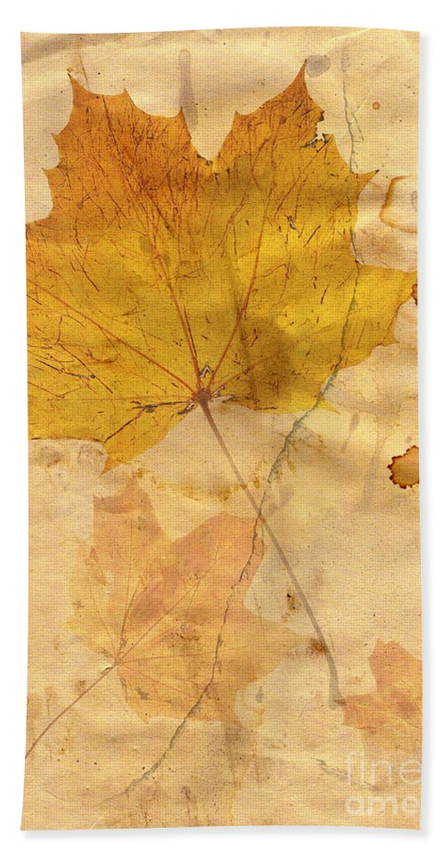 Detail Hand Towel featuring the digital art Autumn Leaf In Grunge Style by Michal Boubin