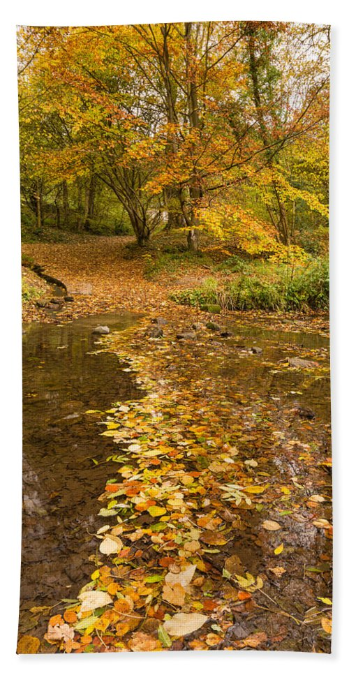 Northumberland Bath Sheet featuring the photograph Autumn Leaves In Burn Vertical by David Head