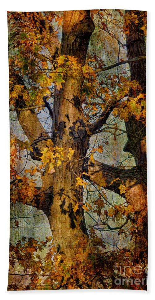 Tree Hand Towel featuring the photograph Autumn Oaks In Dance Mode by Lois Bryan