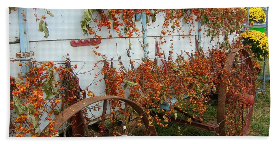 Autumn Sprigs Bath Sheet featuring the photograph Autumn On The Wagon by Elaine Duras