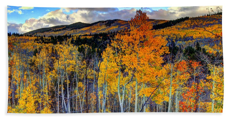 Fall Bath Sheet featuring the photograph Autumn Pass by Scott Mahon