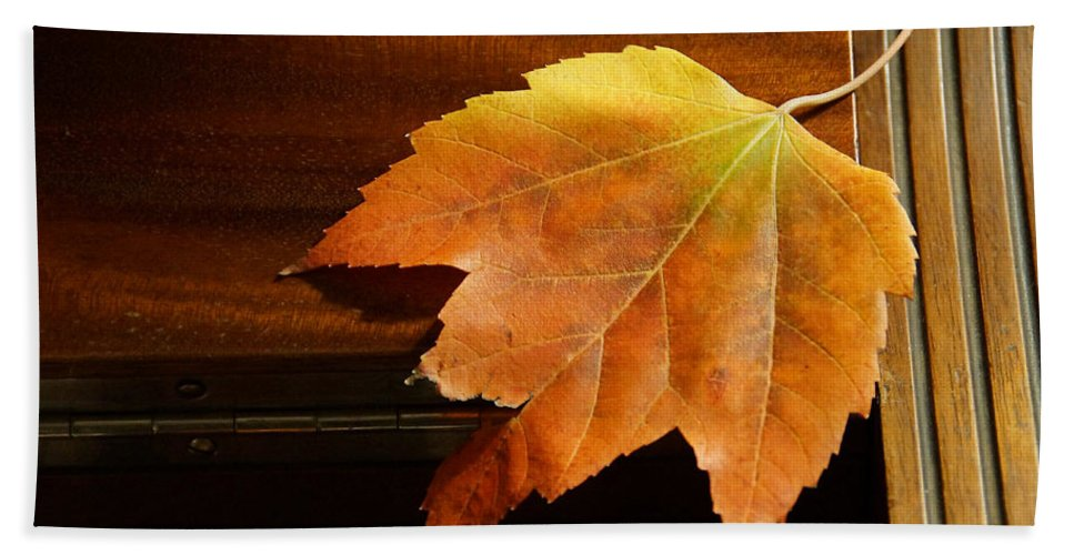 Autumn Hand Towel featuring the photograph Autumn Piano 15 by Mick Anderson