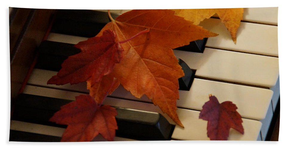 Autumn Hand Towel featuring the photograph Autumn Piano 6 by Mick Anderson