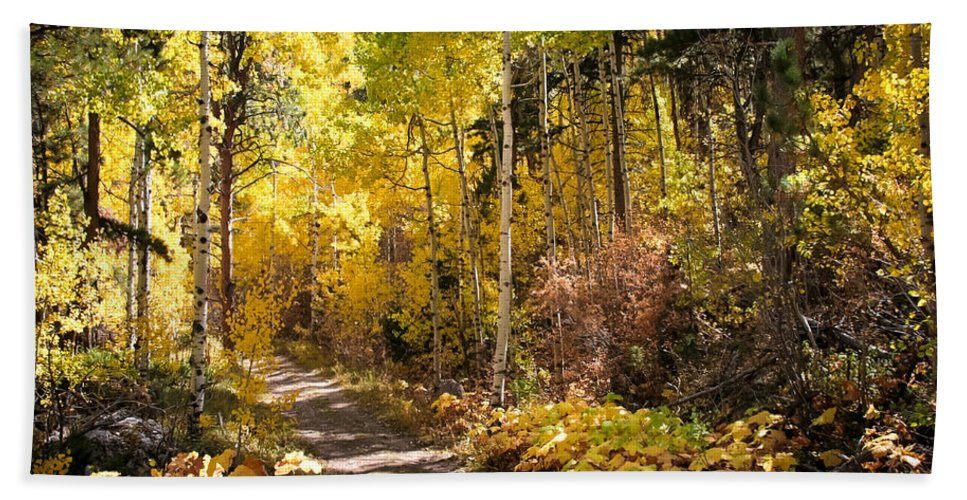 Autumn Bath Sheet featuring the photograph Autumn Road - Tipton Canyon - Casper Mountain - Casper Wyoming by Diane Mintle