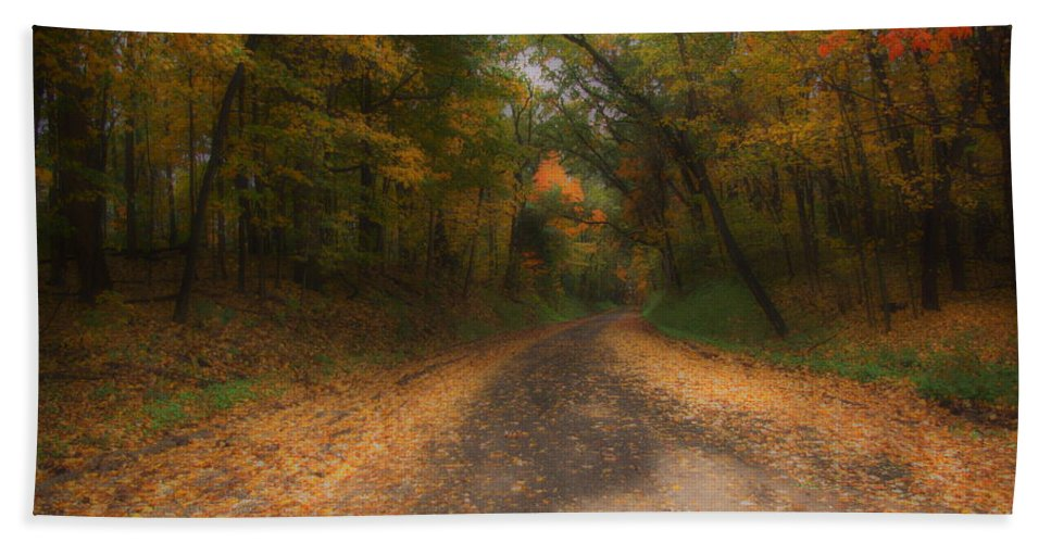 Michigan Hand Towel featuring the photograph Autumn Road by Gary Richards