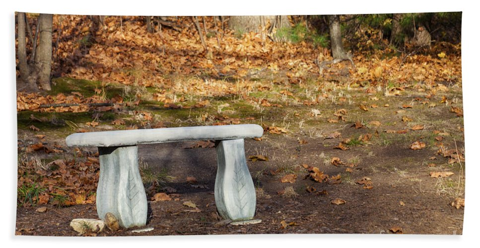 Autumn Hand Towel featuring the photograph Autumn Seat by Diane Macdonald