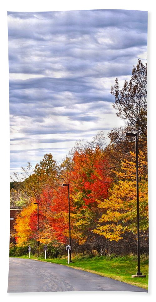 Autumn Bath Sheet featuring the photograph Autumn Sky by Frozen in Time Fine Art Photography