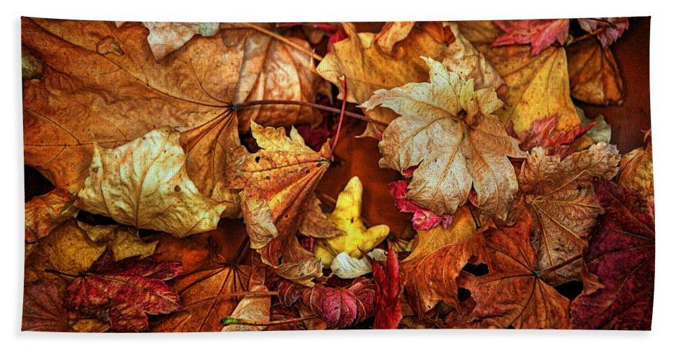 Lisa Knechtel Hand Towel featuring the photograph Autumn Splendour by Lisa Knechtel