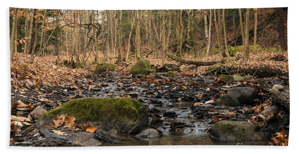 Waterfall Hand Towel featuring the photograph Autumn Tributary Path by Darleen Stry