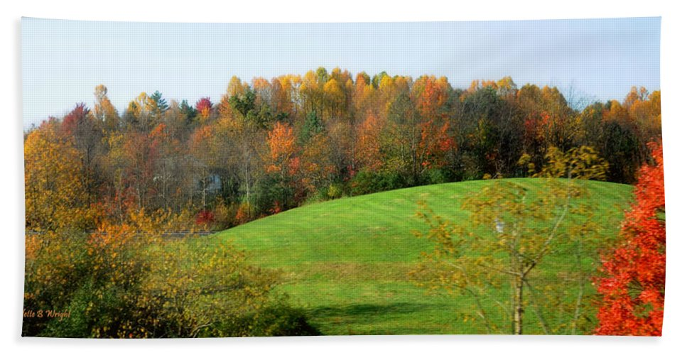 Nature Hand Towel featuring the photograph Autumnal Beauty by Paulette B Wright