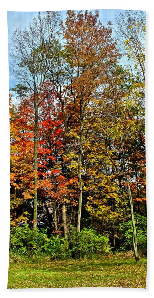 Autumn Bath Sheet featuring the photograph Autumnal Foliage by Frozen in Time Fine Art Photography