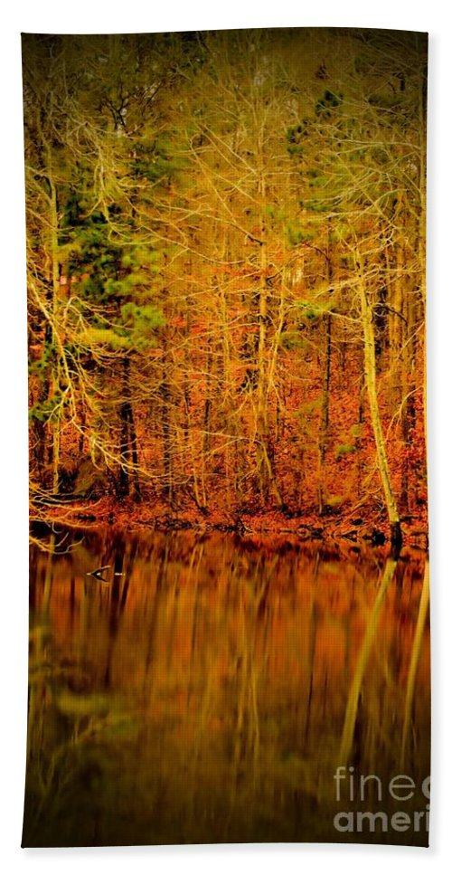 Autumn's Past Hand Towel featuring the photograph Autumn's Past by Maria Urso