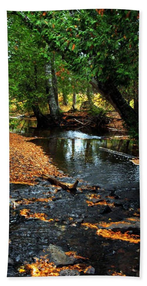 Eagle River Hand Towel featuring the photograph Autumns River by Optical Playground By MP Ray