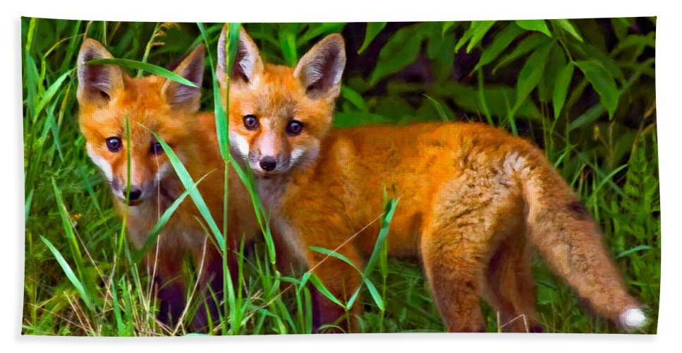 Fox Bath Sheet featuring the photograph Babes In The Woods Oil by Steve Harrington