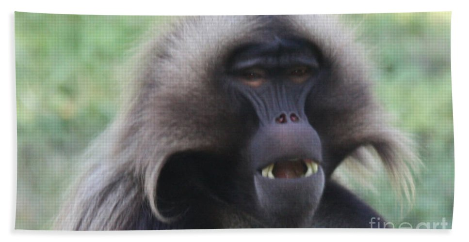 Baboon Bath Sheet featuring the photograph Baboon by John Telfer