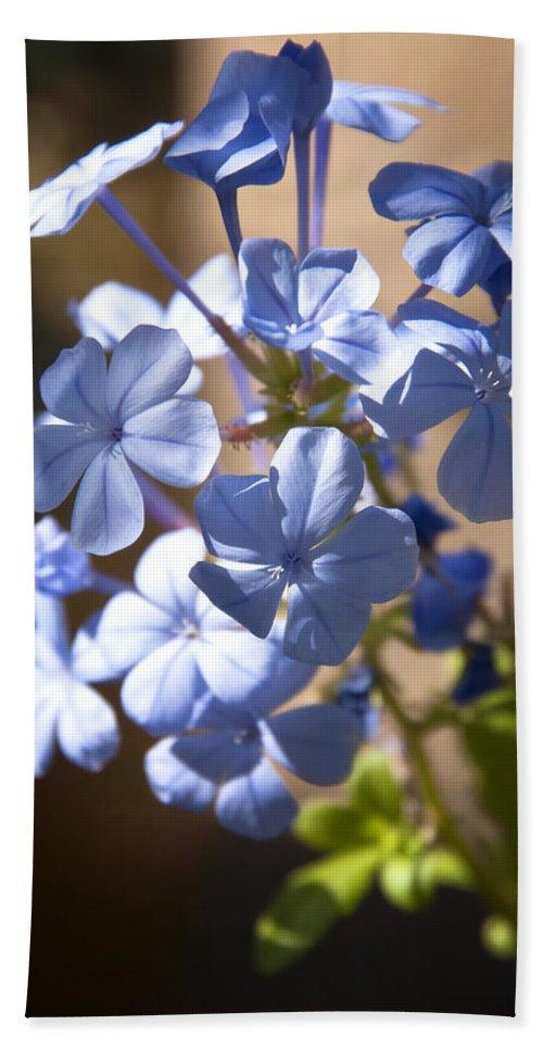 Blue Wildflowers Bath Sheet featuring the photograph Baby Blues by Saija Lehtonen