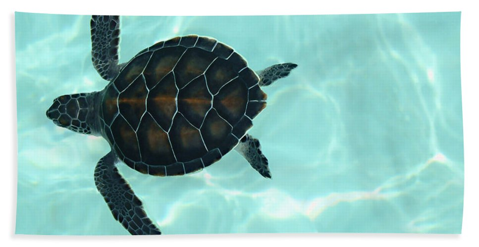 Baby Sea Turtle Bath Sheet featuring the photograph Baby Sea Turtle by Ellen Henneke