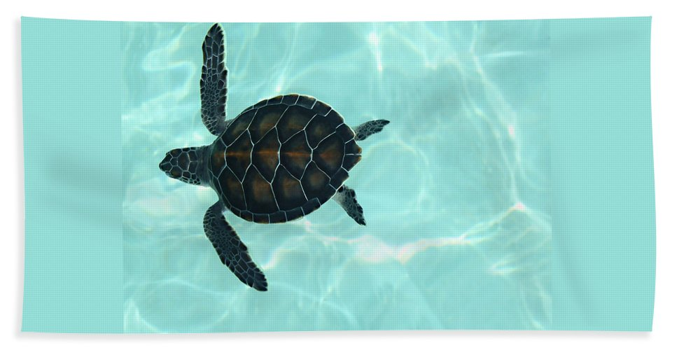 Baby Sea Turtle Hand Towel featuring the photograph Baby Sea Turtle by Ellen Henneke