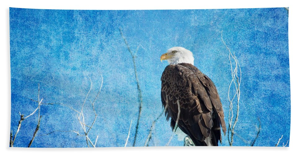 Bald Eagle Bath Sheet featuring the photograph Bald Eagle Blues by James BO Insogna