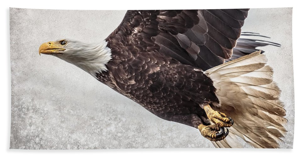 Bald Eagle Fly By Bath Sheet featuring the photograph Bald Eagle Fly By by Wes and Dotty Weber