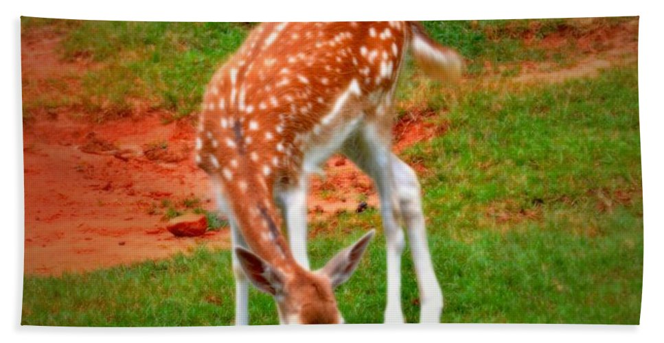 Bambi Bath Sheet featuring the photograph Bambi by Tara Potts