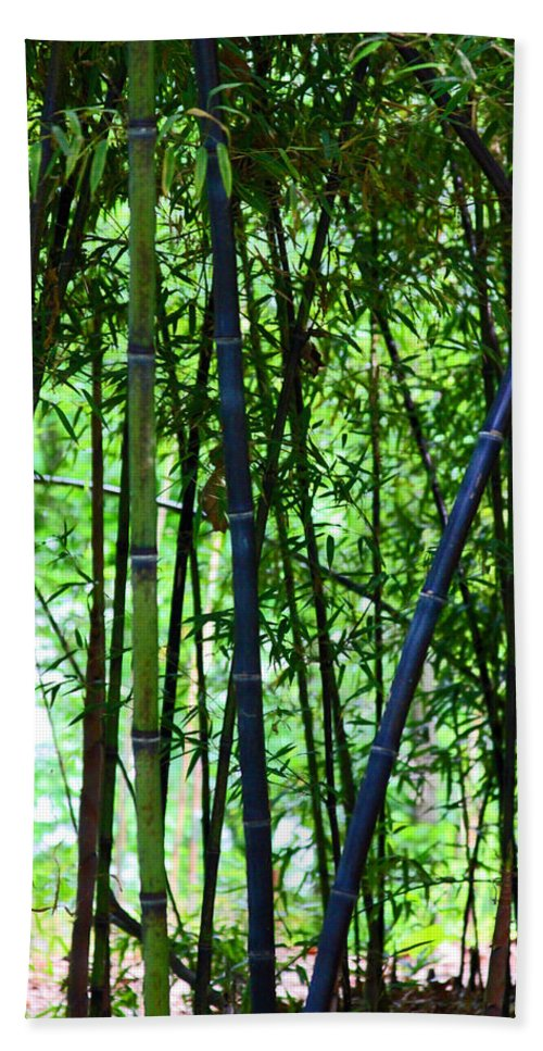 Bamboo Bath Sheet featuring the photograph Bamboo by Carolyn Stagger Cokley