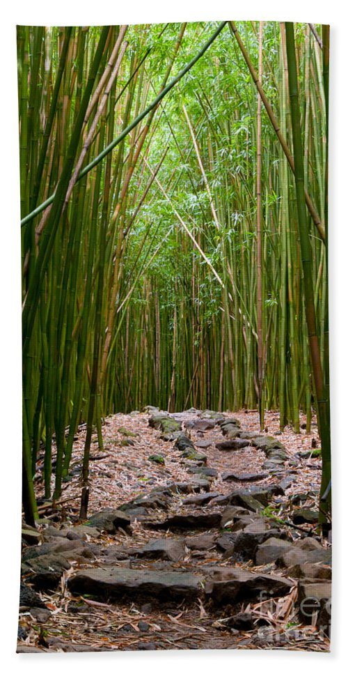 Bamboo Forest Trail Trails Rock Rocks Path Paths Haleakala National Park Seven Pools Area Maui Hawaii Nature Landscape Landscapes Hand Towel featuring the photograph Bamboo Forest by Bob Phillips