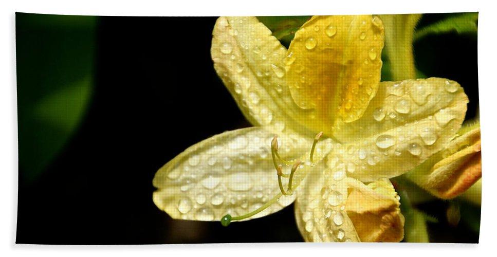 Flower Bath Sheet featuring the photograph Banana Azalea by Susan Herber