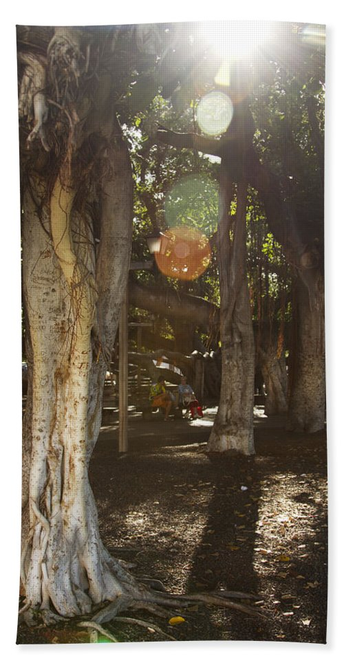 Banyan Tree Park Hand Towel featuring the photograph Banyan Tree Park by Jessica Velasco