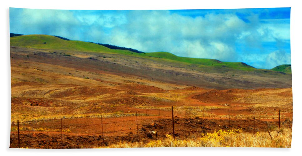 Barbed Wire Bath Sheet featuring the photograph Barbed Wire Fence by Paulette B Wright