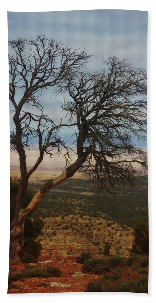 Bare Hand Towel featuring the photograph Bare Tree by Valerie Loop