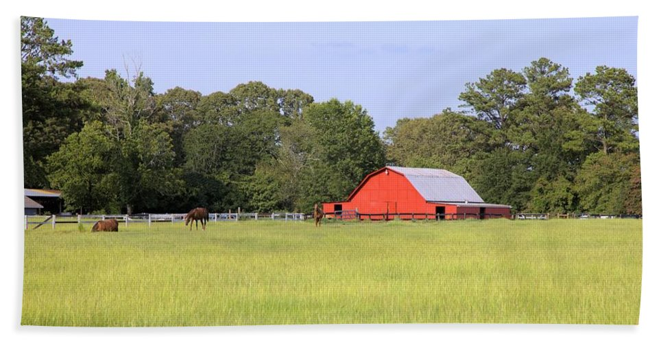 1979 Hand Towel featuring the photograph Barn And Pasture by Gordon Elwell