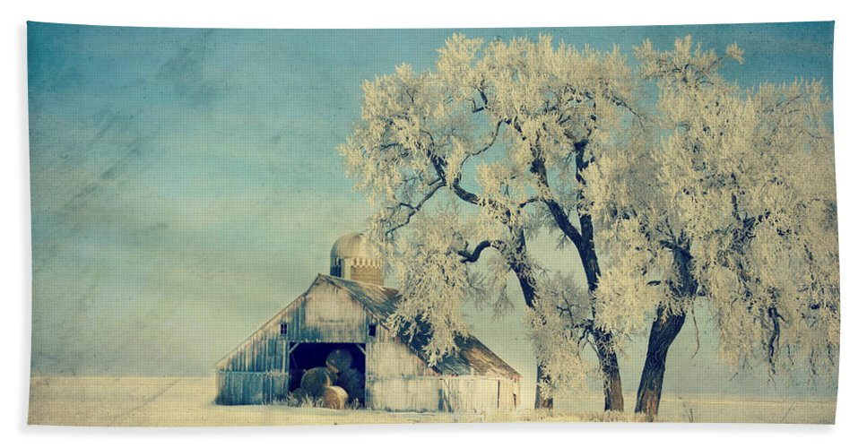 Barn Hand Towel featuring the photograph Winter Time Blues by Julie Hamilton