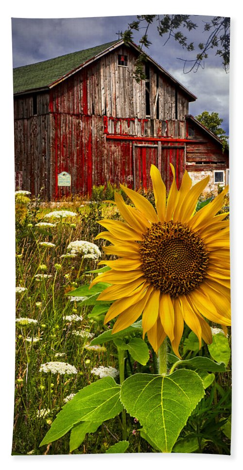 Barn Hand Towel featuring the photograph Barn Meadow Flowers by Debra and Dave Vanderlaan