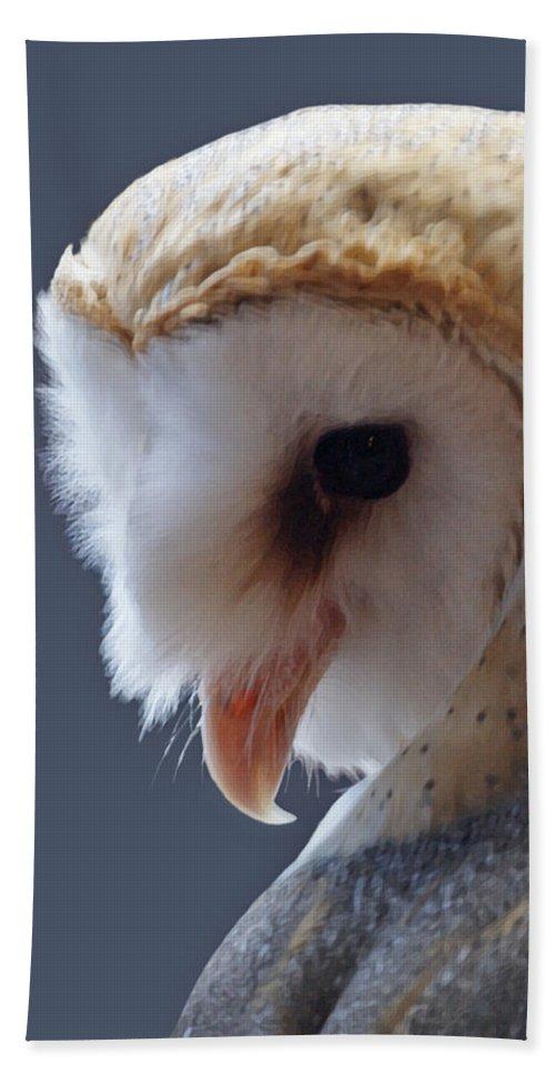 Barn Owls Bath Sheet featuring the digital art Barn Owl Dry Brushed by Ernie Echols