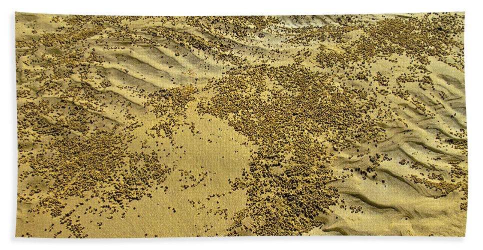 Beach Hand Towel featuring the photograph Beach Desertscape by Jocelyn Kahawai