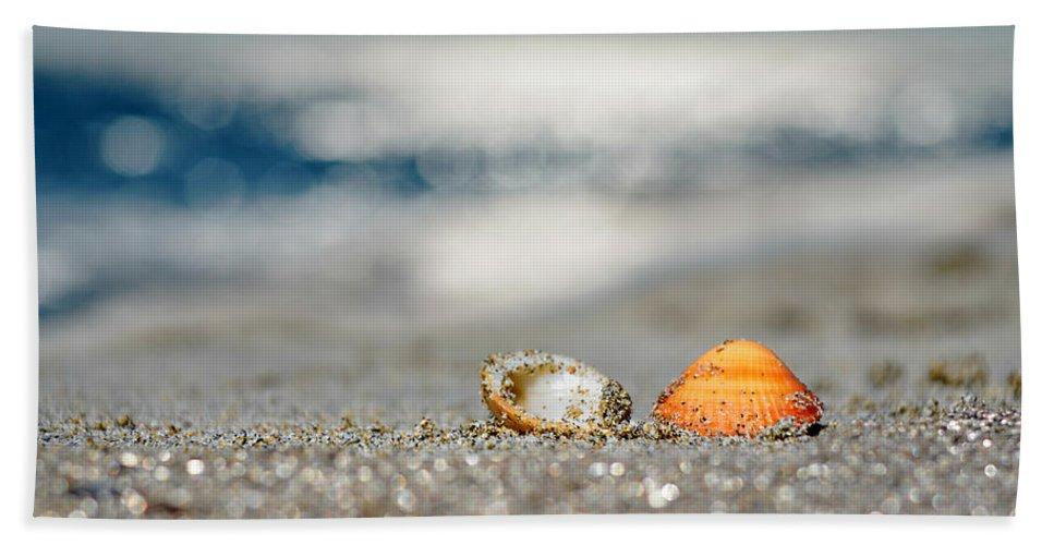 Beach Bath Sheet featuring the photograph Beach Lovers by Laura Fasulo