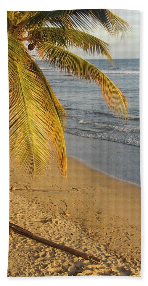 Beach Bath Sheet featuring the photograph Beach Under Golden Palm by Anita Burgermeister
