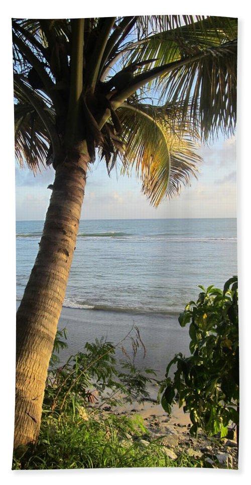 Beach Bath Sheet featuring the photograph Beach Under The Palm 4 by Anita Burgermeister