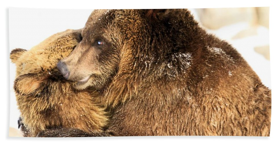 Grizzly Bear Hand Towel featuring the photograph Bear Hug by Adam Jewell