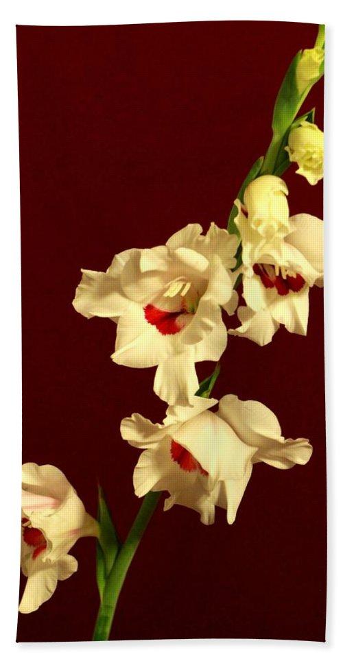 Flowers Hand Towel featuring the photograph Beautiful Array by Deborah Crew-Johnson